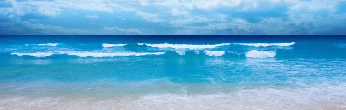 10 Best Reasons To Visit Bonaire!