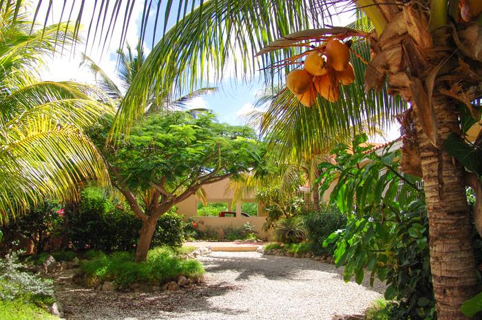 Villa topaz sunrentals bonaire