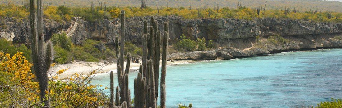 Bonaire's Natuur