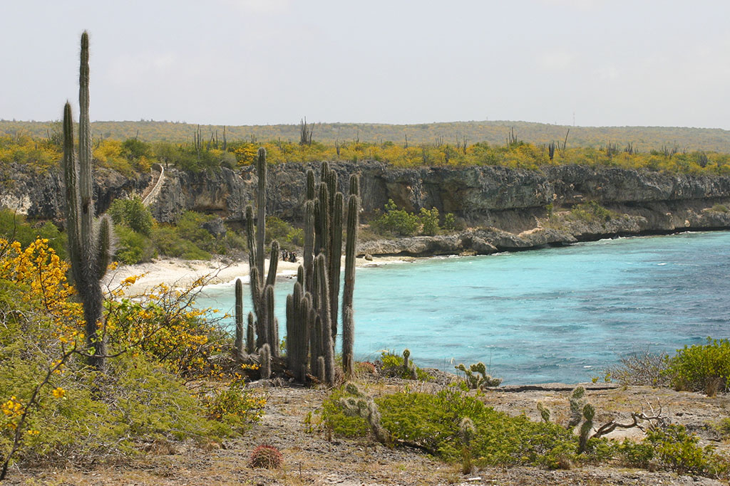 National Park Slagbaai Bonaire